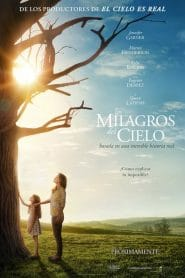 Milagros del cielo – Miracles from Heaven (2016) 1080p latino